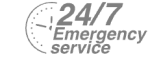 24/7 Emergency Service Pest Control in Ashtead, KT21. Call Now! 020 8166 9746
