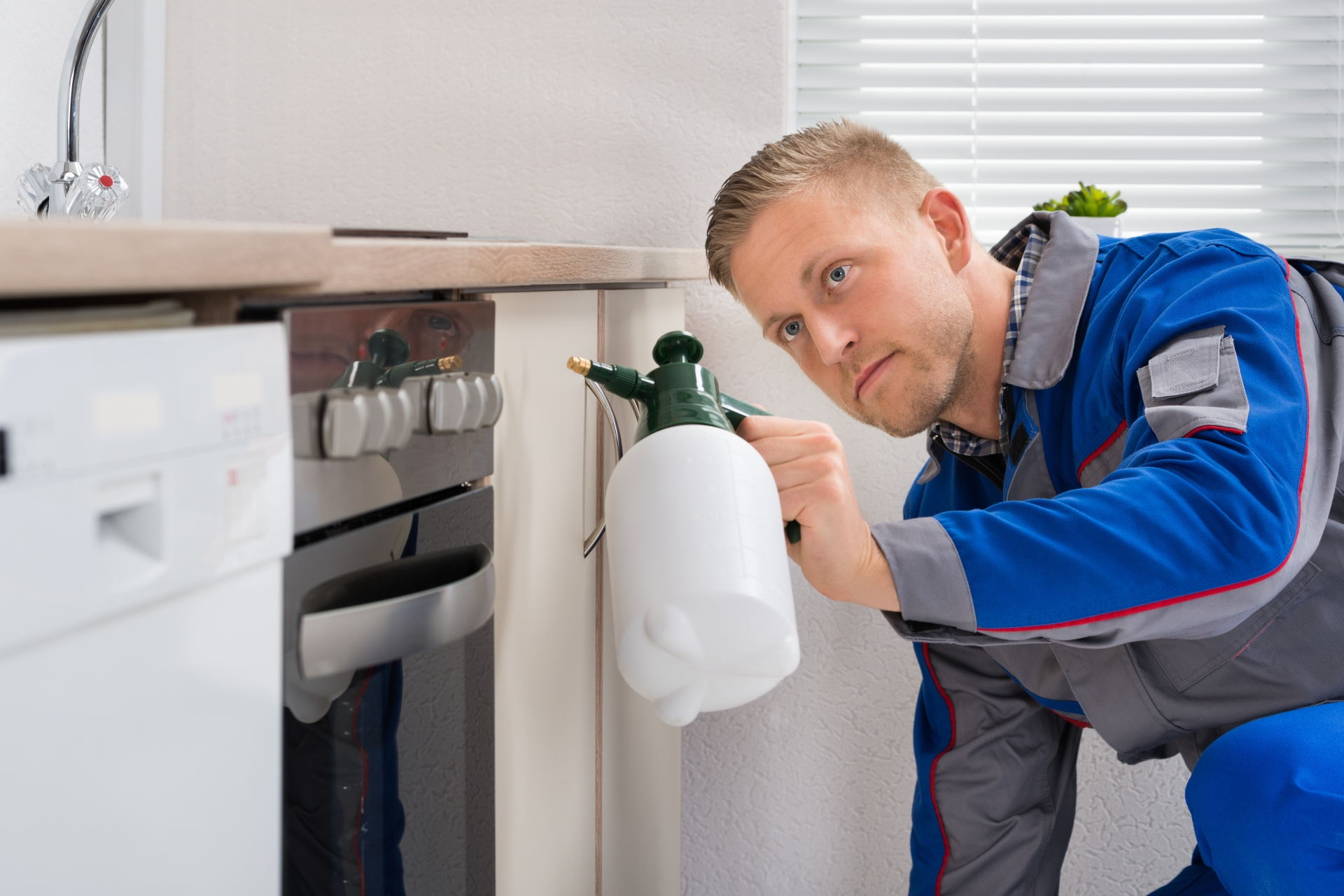 Pest Inspection, Pest Control in Ashtead, KT21. Call Now 020 8166 9746